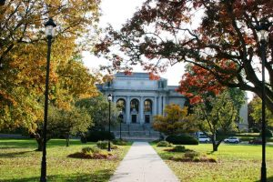 Fall at the State Library Image